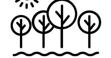 Politiques et gestion de l'eau et des milieux aquatiques