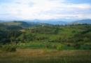 Les paiements pour services écosystémiques en agriculture : une contribution d'AScA au débat